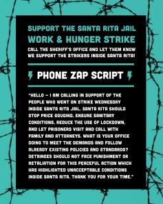 IG_Phone Zap_Script